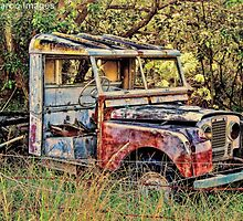 Seen Better Days by wallarooimages