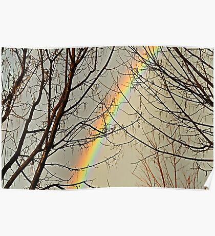 rainbow framework #2 Poster