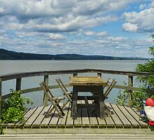 Picnic At The Saugerties Lighthouse by PineSinger