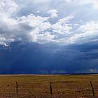 Prairie Rain by Gregory Collins