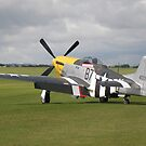 Mustang P-51D 'Ferocious Frankie', by Edward Denyer