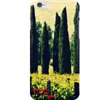 Vineyards 2 iPhone Case/Skin