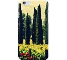 Vineyards 2 iPhone Case/Skin