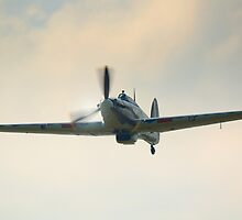 Hurricane by Nigel Bangert