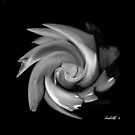 Black Fusion by JudithE