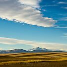 The Rhythm Of The Plains by Gregory J Summers