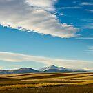 The Rhythm Of The Plains by nikongreg