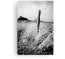 Country Canvas Print