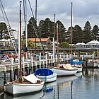 Port Fairy district of south west Victoria, Australia by Roger Neal