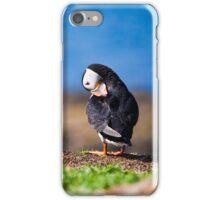 Puffin in Scotland  iPhone Case/Skin