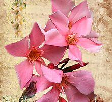 Campsis Radican  by Irene  Burdell