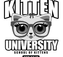Kitten University - Grey by Adamzworld