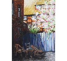 The Blue Paling - Backyard Of The ArtHouse Buetzow Photographic Print
