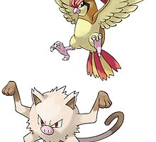 pidgeotto and Mankey,  by linwatchorn
