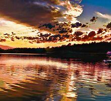 Sunset Swim by Wib Dawson