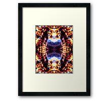 Wildfire - 2 Framed Print