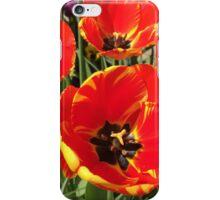 Terrific Tulips iPhone Case/Skin