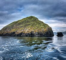 Galta Mor - Shiant Islands by hebrideslight