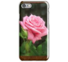 Pink Roses in Anzures 3 Blank P3F0 iPhone Case/Skin