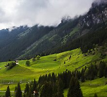 A Whole New Green by Nishant Kuchekar