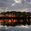 Hidden Sunset by Chris Ferrell