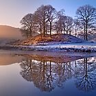 Clearing mist and reflections - River Brathay by Dave Lawrance