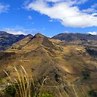 Summit Farms In The Andes Of Ecuador Panorama by Al Bourassa