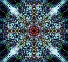 Symmetrical Silk Strands by Phil Perkins