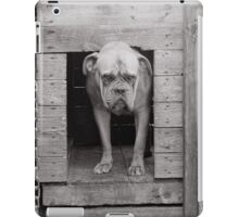 Mastiff on guard iPad Case/Skin