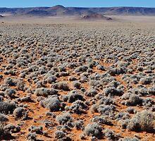 Namibian nuances by Karen01