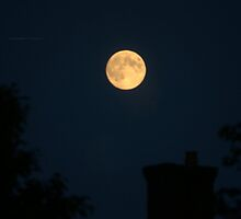 """ Sturgeon Moon Over Sleeping Rooftops "" by Richard Couchman"