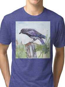 Coco on the fencepost Tri-blend T-Shirt
