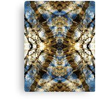 Aquatic Lace 3 Canvas Print