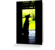 Dogs Are A Man's (Or Woman's) Best Friend Greeting Card