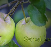 Get well soon Twin Apples card by walstraasart