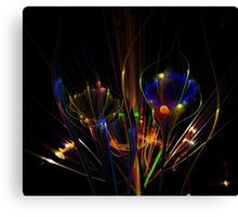 Opposites Attract Canvas Print