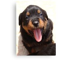 Cute Rottweiler Puppy With Tongue Out Canvas Print