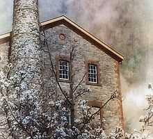 Spring at the mill by Jan Pudney