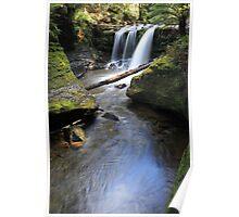 Liffey Falls- Tasmania Poster