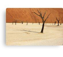 Dead Vlei- Namibia Canvas Print