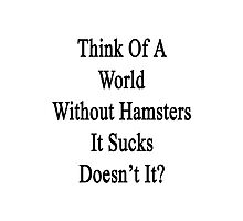 Think Of A World Without Hamsters It Sucks Doesn't It?  Photographic Print