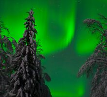 Aurora Borealis by Chris Martin