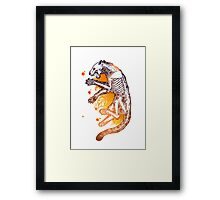 Panther anatomy Framed Print