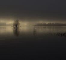 Cold Dawn by Bruce Reardon
