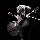 A Cellist's Curtain Bow by Simone Rudolphi