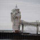 St Joseph North Pier Lighthouse - 27 by Debbie Mueller