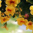 Tiny Yellow Million Bells by Linda  Makiej