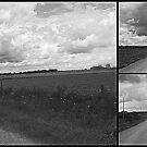 Rural Roads Collage by PPPhotoArt