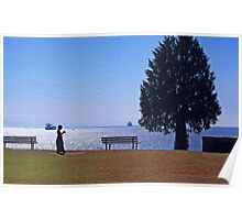 A View From The Park Poster