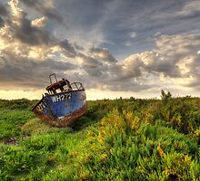 Rusty Wreck by Ian Merton